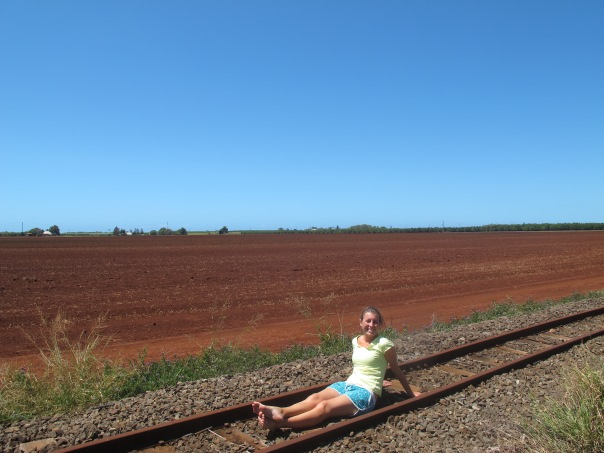 Bundaberg sugar cane tracks6