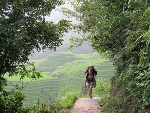 terrazze di riso Cina