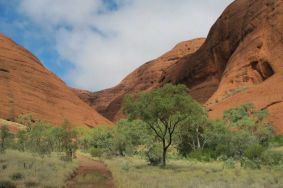 The Olgas-the wind hike-Uluru