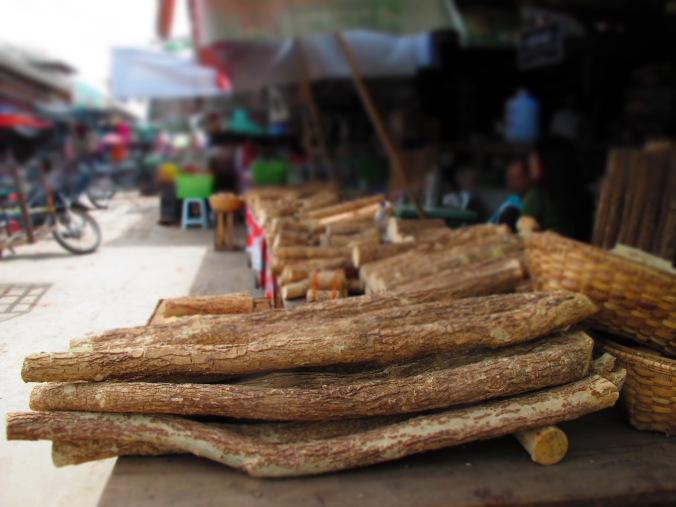 Myanmar Meiktila market13