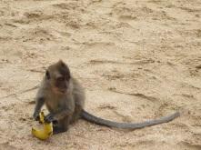 Spiaggia a Aonang Thailand