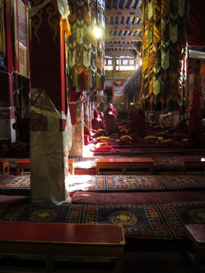 Monaci in preghiera al Sera Monastery - Lhasa